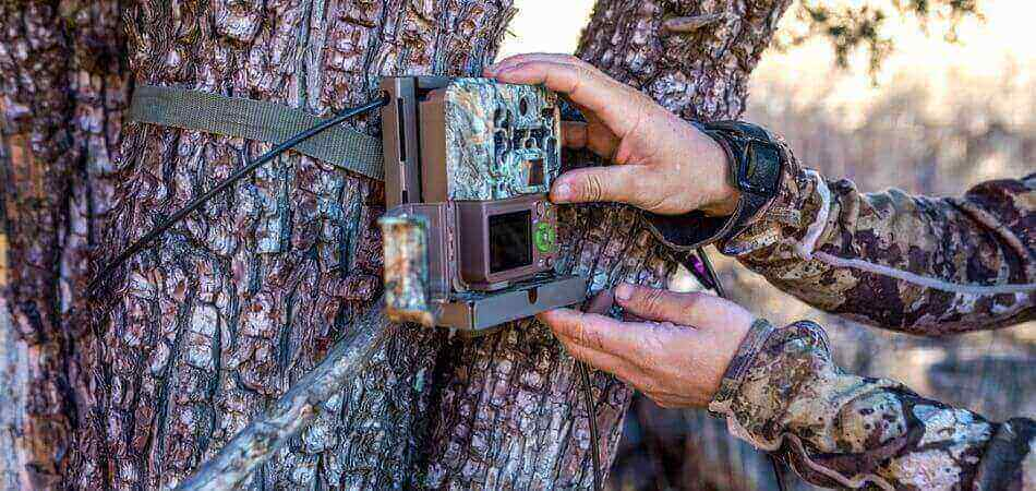 Best Trail Camera Under $150
