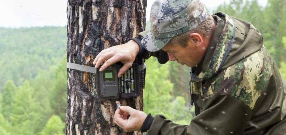 10 Best Trail Camera Under $150 - Top Rated Scouting [UPDATED] 2021 1